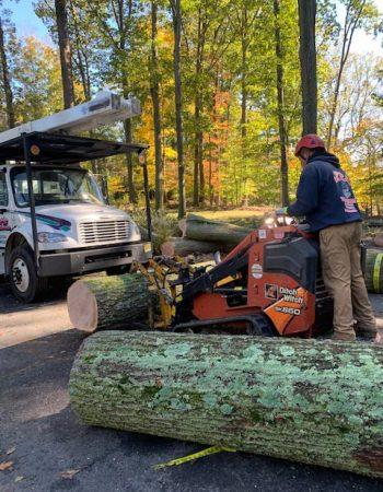JR's Tree Service