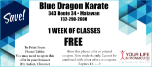 Blue Dragon Karate Matawan .nj Free classes