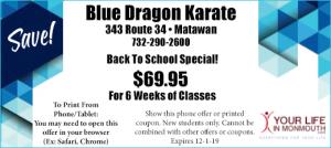 Blue Dragon Karate in Matawan coupon