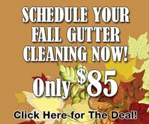 Fall Cleaning Deal